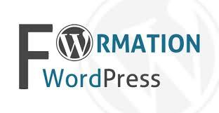 formation wordpress en video